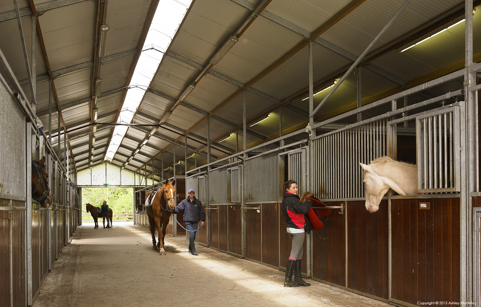 The Equestrian Centre stables at Mount Juliet Country Estate in County Kilkenny by Ashley Morrison.